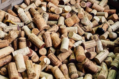 Interesting Oak Corks